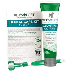 kit de pasta dental para perros