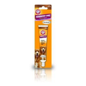 pasta de dientes para perros bicarbonato de sodio